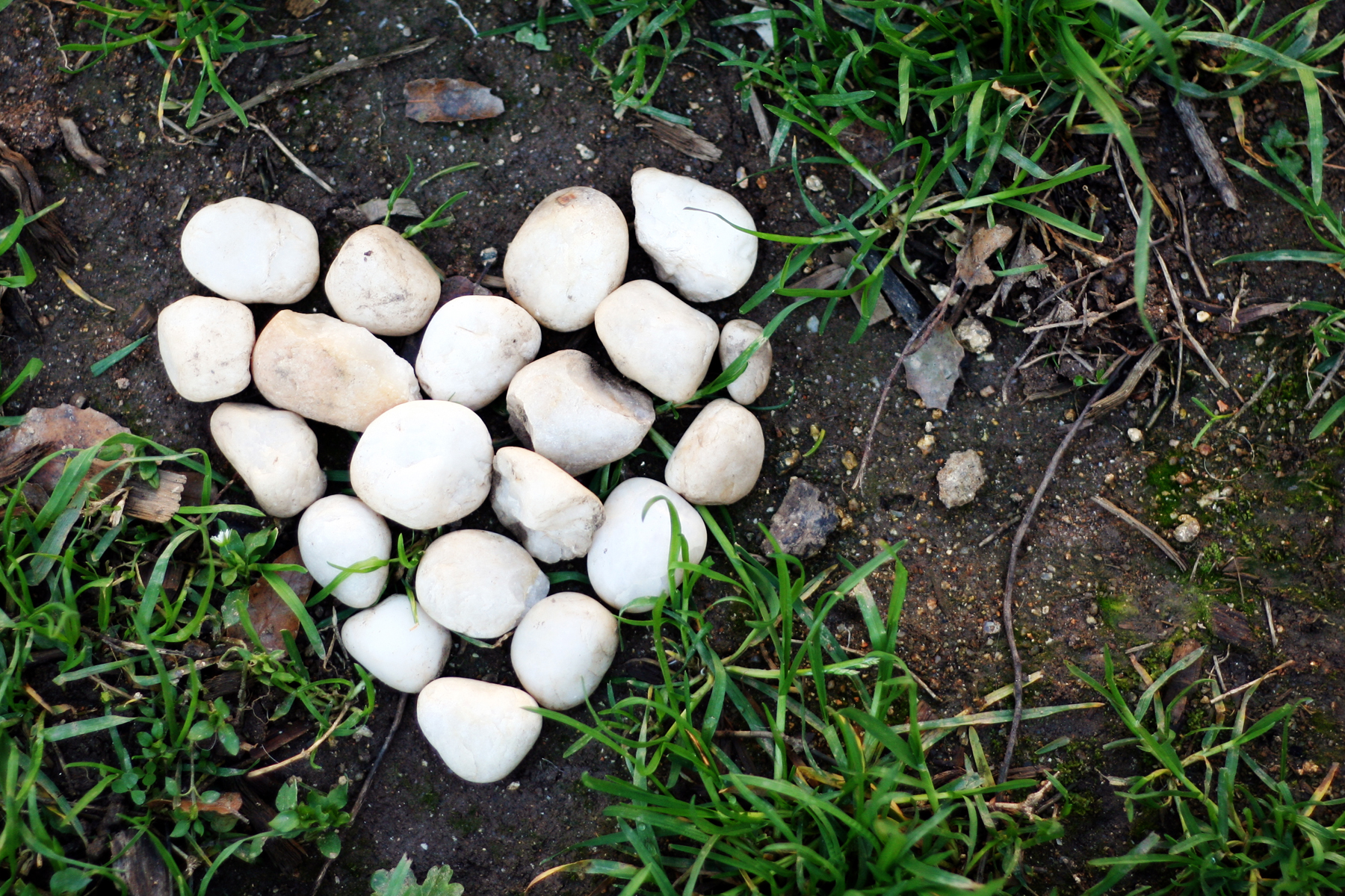 white rocks heart